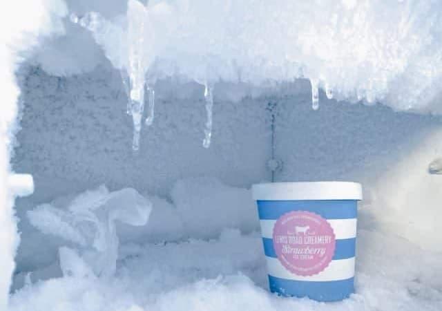 08-12-19-Freezer-Suffering-through-Popsicle-Season (1)
