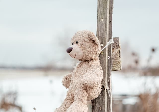 Donate Stuffed Animals